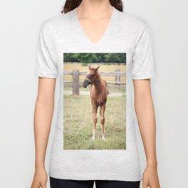 Little Horse Unisex V-Neck
