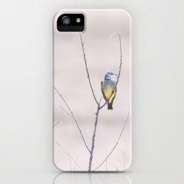 """Cassin's Kingbird 2"" by Murray Bolesta iPhone Case"