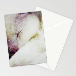 Sleeping Angel 2 Stationery Cards