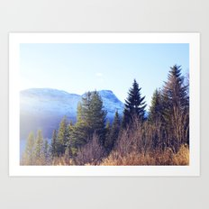 Närvik Mountains and Forest Art Print