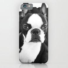 Lulo's evil look. Slim Case iPhone 6s
