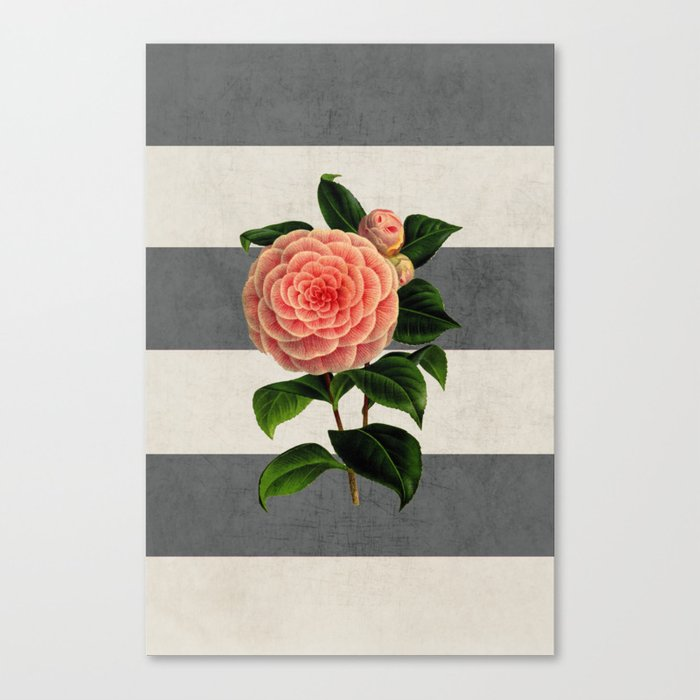 botanical stripes - camellia Canvas Print