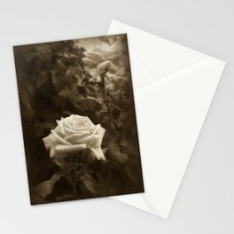 Pink Roses in Anzures 5 Antiqued Stationery Cards