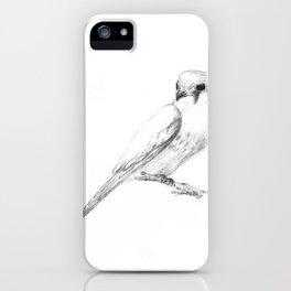 Kestrel quarter iPhone Case