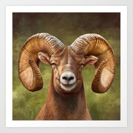 Smiling Bighorn Sheep 03 Art Print