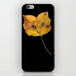 Autumn Cat-1 iPhone Skin