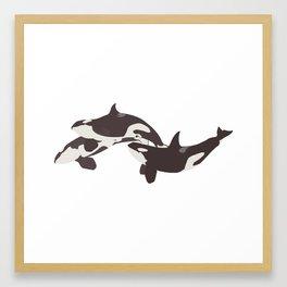 Orca Pod Framed Art Print