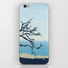 at the seaside* iPhone & iPod Skin