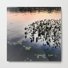 479 - Abstract water plants design Metal Print