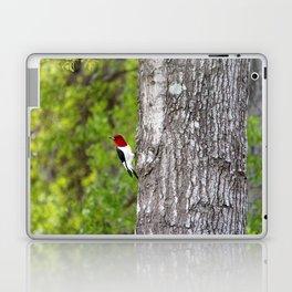 Red-headed Woodpecker Laptop & iPad Skin