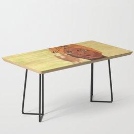 Baduizm Coffee Table