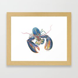 Sea Lobster Framed Art Print