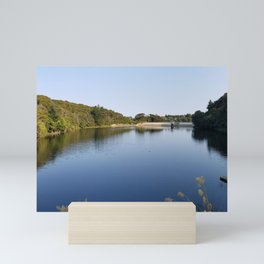 The View Over the Ross Creek Reservoir Mini Art Print