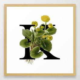 K. Kingcup Framed Art Print