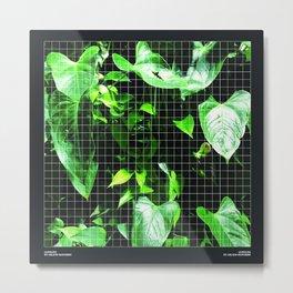 Jungles Metal Print