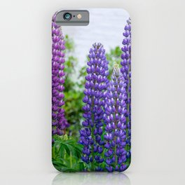Lupinus iPhone Case