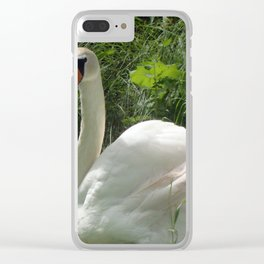 Swan in the park by the lake Clear iPhone Case