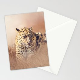 Wild Leopard resting in the grass Stationery Cards