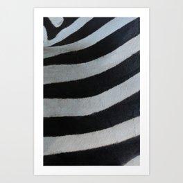 Textura: Zebra Stripes Art Print