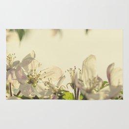 Vintage Apple Blossoms II Rug