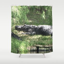 Papa Gator Shower Curtain