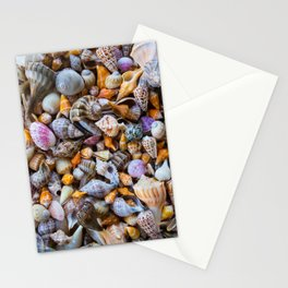 Seashell Collection Stationery Cards