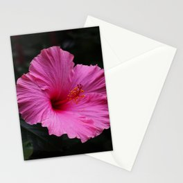 Hibiscus at Eden Project Stationery Cards