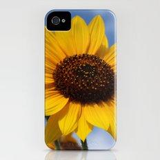 Sunflower iPhone (4, 4s) Slim Case