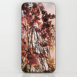 Pink Sun iPhone Skin