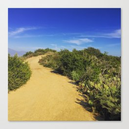 A Dusty Path Canvas Print