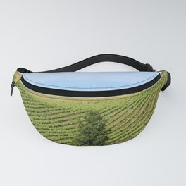 Wine Country Rows of Vines Fanny Pack