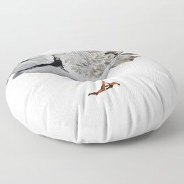 Piping Plover Floor Pillow