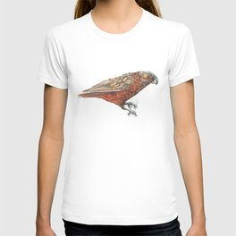 New Zealand parrot, the Kaka T-shirt