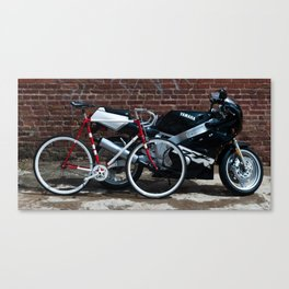 two by two Canvas Print