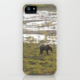 Grizzly bear at sundown iPhone Case