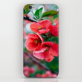Red Lady iPhone Skin