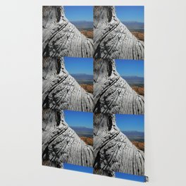 View of Bryce Canyon with Tree Trunk Wallpaper
