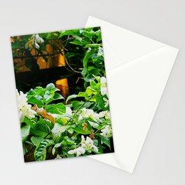Flowers At Dusk Lit By Lantern Light Stationery Cards