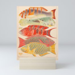 """Fishes from """"The Great Barrier Reef of Australia"""" by William Saville Kent, 1893 Mini Art Print"""