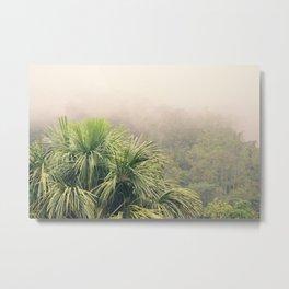 Rainforest Fog Metal Print
