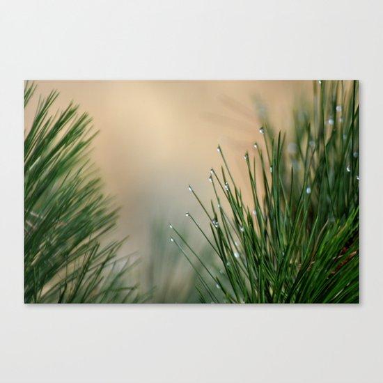 RAINDROPS ON GRASS Canvas Print