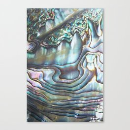 Shimmery Pastel Abalone Shell Canvas Print