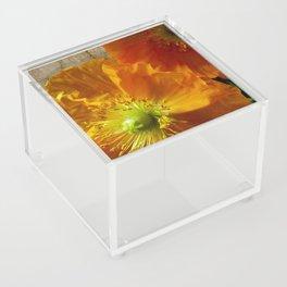 Yellow Moon Acrylic Box