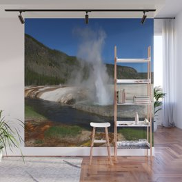 Thermal And Geyser Field Yellowstone NP Wall Mural