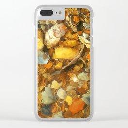 Hidden Treasures Clear iPhone Case