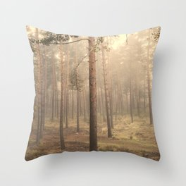 """Rectilineum"". Secret places. Foggy dreams. Retro Throw Pillow"