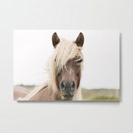 Horse V2 Metal Print