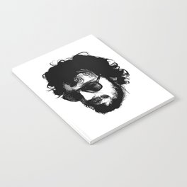 FABRIZIO Notebook