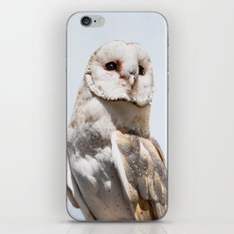 Owl Portrait Photography iPhone Skin