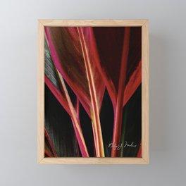 Red Hawaiian Ti Framed Mini Art Print